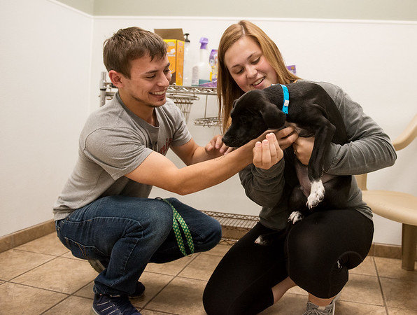 Globe/Roger Nomer<br /> Joel Sipes and Haleigh Gray, Joplin, play with Lucian on Friday at the Joplin Humane Society.