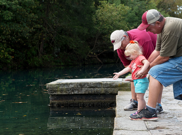 Brenda and Gary Dovin, Green Forest, Ark., help their granddaughter Olivia Headrick, 2, feed fishes at the Roaring River fish hatchery on Friday.<br /> Globe | Roger Nomer