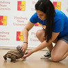 Gizelle Sisson, a Pittsburg State sophomore from Riverton, cleans up a tortoise for its time in the spotlight at a selfie booth at Nature Reach at PSU on Tuesday.<br /> Globe | Roger Nomer
