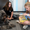 "Eight-year-old Eva David reads the children's book ""Dixie"" to ""Story,"" a young bouvier as owner Sarah Withrow, of the Tri-State Pet Therapy Club, looks on during Dog Day Afternoon on Tuesday at the Joplin Public Library. The popular event allows children to practice reading aloud to a living, breathing audience, without fear of criticism. <br /> Globe 
