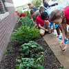 St. Mary's Elementary fourth graders, including Ellie Bohachick, right, work in the school's butterfly garden on Wednesday.<br /> Globe | Roger Nomer