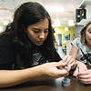 From the left: Staff member Alex tackett and Alice Trujillo, 9, work together to solve a science puzzle on Tuesday afternoon at the Boys and Girls Club of Southwest Missouri.<br /> Globe | Laurie Sisk