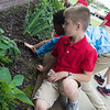 Joshua Ndukwu, left, and Ryker Veer, fourth graders at St. Mary's Elementary, work in the school's butterfly garden on Wednesday.<br /> Globe | Roger Nomer
