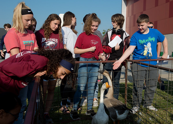 Joplin middle school students look at a duck and goose during Thursday's Ag Day at Joplin High School.<br /> Globe | Roger Nomer