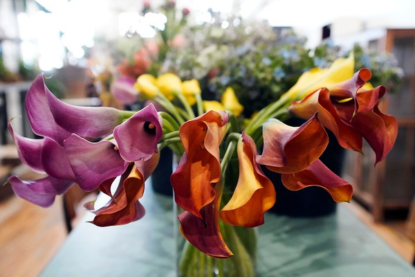 BEN GARVER — THE BERKSHIRE EAGLE<br /> Tuesday is the day fresh flowers are delivered to Township Four a floristry and home shop  co-owned by Jed Thompson and Nathan Hanford, North Street in Pittsfield. Tuesday, April 16, 2019. This photo show calla lilies.
