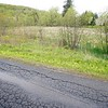 BEN GARVER — THE BERKSHIRE EAGLE<br /> Eaton Lane in Pittsfield is beginning to show signs of age and is located adjacent to a wetland, the private road off of South Mountain Road may be due for  renovation, Tuesday, May 14, 2019.