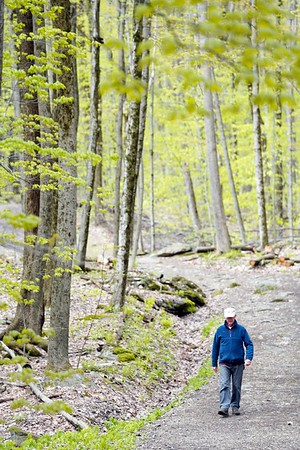 BEN GARVER — THE BERKSHIRE EAGLE<br /> Stan Spencer hikes in Kennedy Park in Lenox, Monday, May 13, 2019. The trees are greening out with foliage and spring slowly loses its grip on the cold.