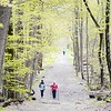 BEN GARVER — THE BERKSHIRE EAGLE<br /> A couple of women hike in Kennedy Park in Lenox, Monday, May 13, 2019. The trees are greening out with foliage and spring slowly loses its grip on the cold.