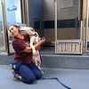 BEN GARVER — THE BERKSHIRE EAGLE<br /> Becca Nolasco of the Berkshire Humane Society plays with Lucky, one of five dogs moved from South Carolina because of Hurricane Dorian. Wednesday, September 4, 2019. The dogs are in quarantine right now until they are checked out by a local veterinarian.