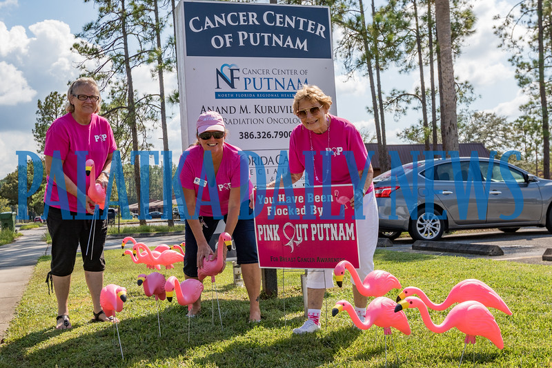 Members of Pink Out Putnam, from left, Carol Horner, Mindy Estep, and Kay Register, flock the offices of Dr. Anand Kuruvilla with pink flamingoes to celebrate the beginning of breast cancer awareness month in October. Fran Ruchalski/Palatka Daily News