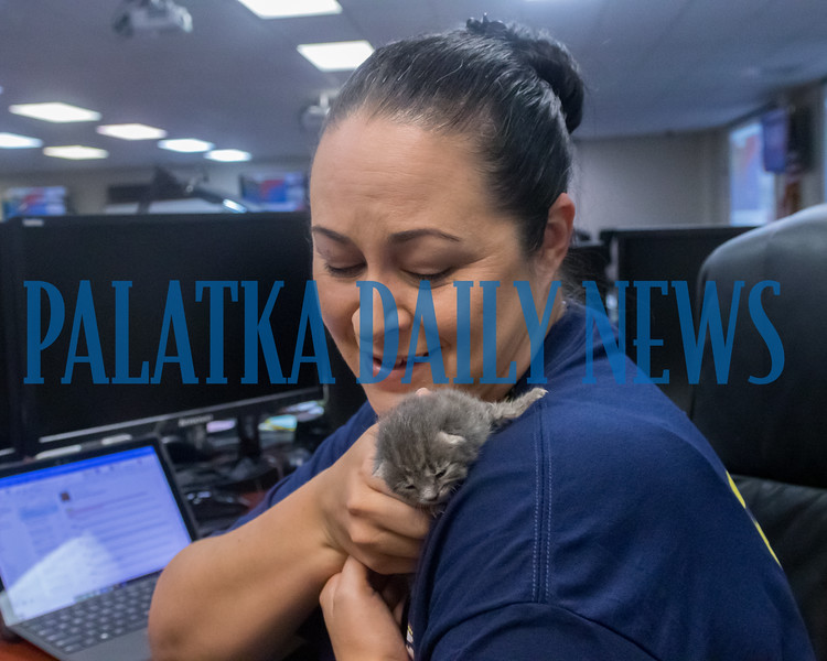 Jodie Fiske holds a young kitten in the Putnam County emergency operations center that was found by Animal Control. It's been suggested she's the first life rescued from Hurricane Dorian and needs to take on a hurricane's name. Fran Ruchalski/Palatka Daily News