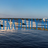 The St. Johns River on Tuesday morning shows the tide is higher, but the river is fairly calm. Fran Ruchalski/Palatka Daily News