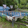 The 2018 version of the Swamp Monkey and Ocklawaha Raft Race winner sits in Justin Morris' yard and is being used for parts for the new and improved 2019 version. Fran Ruchalski/Palatka Daily News