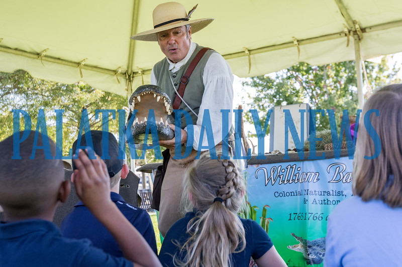Mike Adams as William Bartram thrusts an alligator head at the students at the Bartram Frolic learning experience for schoolchildren on Tuesday morning. Fran Ruchalski/Palatka Daily News