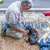 Two dogs were rescued from the residence by firefighters Garrett Videon and Matt Pope. This one  given oxygen by Quin Romay, Chief of Putnam County Dept.of Emergency Services, was lifeless when found but appears to have recovered. Fran Ruchalski/Palatka Daily News