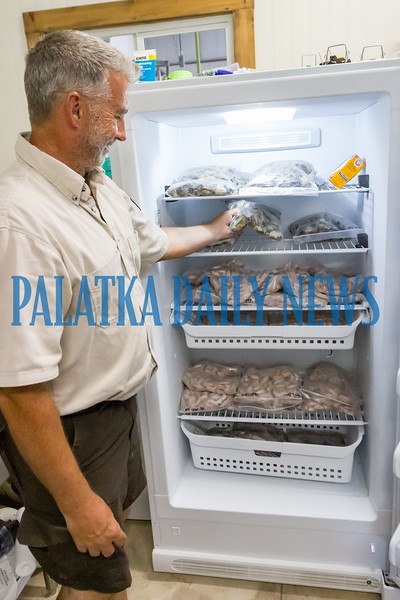 Project Leader Ken Blick stands by a refrigerator in the snake room filled with frozen baby mice and quail which will be thawed and fed to the snake. Fran Ruchalski/Palatka Daily News