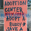 The sign outside the adoption event inviting passers-by to come in and save the life of a lonely pup. Fran Ruchalski/Palatka Daily News