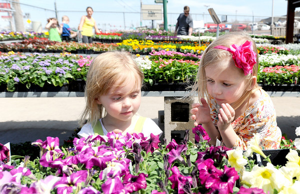 Three-year-old Lydia Brewer and her five-year-old sister Adilyn Brewer select flowers to plant around their Carl Junction home during a stop at Joplin Greenhouse on Thursday afternoon.<br /> Globe | Laurie Sisk