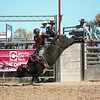 Chadron State College rodeo team member Dakota Rice of Kellogg, Idaho, in the short go at the final rodeo of the fall season at Laramie County Community College in Cheyenne, Wyoming. (Photo by Brian Gauk)
