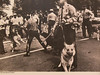"""""""The Road to the Promised Land"""" exhibit chronicling the U.S. Civil Rights movement is on display in the Mari Sandoz High Plains Heritage Center now through March 15. It includes this image of police response to a peaceful demonstration in Birmingham, Alabama, during the Civil Rights movement. (Charles Moore/Elmwood Foundation)"""