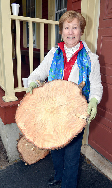 J.S.CARRAS - JCARRAS@DIGITALFIRSTMEDIA.COM  Linda Keeler holds a piece of the blue spruce Thursday, November 13, 2014 that was havested from her front yard at 10 Edgewood Drive in Burnt Hills, N.Y., to be the holiday tree in front of the Capitol Building in Albany.