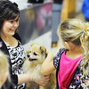 Globe/T. Rob Brown<br /> Bobbie Ahrens, a first-grade teacher at Royal Heights Elementary School, holds Spike, one of the dogs and subjects of children's author David M Sargent Jr., as students walk by and pet the dog Thursday morning, Oct. 4, 2012, during the author's visit to the Joplin school.