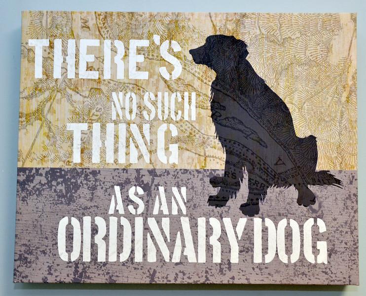 J.S.CARRAS - JCARRAS@DIGITALFIRSTMEDIA.COM   Lansingburgh Veterinary Hospital new name and location Collar City Animal Hospital Saturday, October 18, 2014 at 499 Second Avenue in Lansingburgh, N.Y..