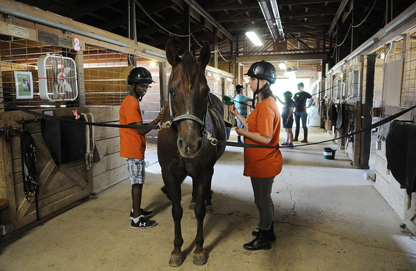 HALEY WARD | THE GOSHEN NEWS <br /> Kia Kurtz and Leah Barber groom a horse during ADEC's summer camp on Friday at Loveway, Inc. Barber said this was her favorite part about the field trip.