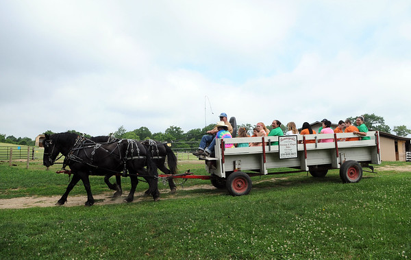 HALEY WARD | THE GOSHEN NEWS <br /> ADEC, Inc. campers ride past on a horse-drawn carriage during ADEC's summer camp on Friday at Loveway, Inc. ADEC offers the summer camp for kids with disabilities ages 5 to 22, and every week they go bowling and swim. They also attend field trips every Friday.