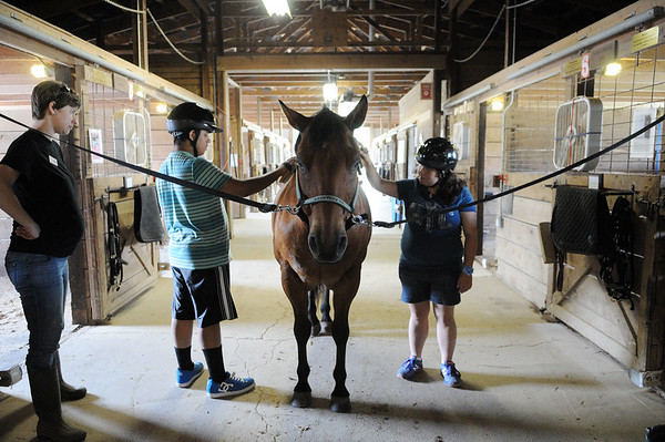 HALEY WARD | THE GOSHEN NEWS <br /> Abraham Cortez and Isis Perez groom a horse as R.J. Arndt, equine manager, looks on during ADEC's summer camp on Friday at Loveway, Inc. LThe campers rode on a horse-drawn cart, participated in a scavenger hunt, lassoed cattle and groomed horses.