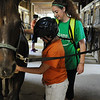 HALEY WARD | THE GOSHEN NEWS <br /> Ashley Fogarty, Direct Support Provider for ADEC, helps Denise Amezquita groom a horse during ADEC's summer camp on Friday at Loveway, Inc. ADEC offers the summer camp for kids with disabilities ages 5 to 22, and every week they go bowling and swim. They also attend field trips every Friday.