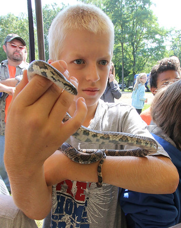 Roger Schneider | The Goshen News<br /> Trevor Witmer, 11, of Elkhart, holds a milk snake as part of an educational program at the Middlebury Riverfest Saturday morning.