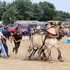 ADAM RANDALL | THE GOSHEN NEWS<br /> Jim Weilnaw, Milan, Ohio, tries to get his horses set up for the pony pull in Topeka Tuesday.