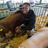 JAY YOUNG | THE GOSHEN NEWS<br /> [JOHN HAS NAME] is pictured with his pigs Adonis, left, and Rocky, Wednesday afternoon at the Elkhart County 4-H Fair.