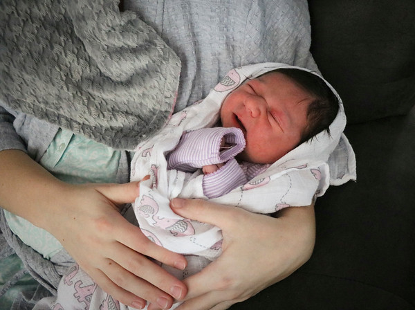 LEANDRA BEABOUT | THE GOSHEN NEWS<br /> Josephine Graber was born at 1:22 a.m., making her the first local baby of 2018, according to sources at time of press. Josephine was born at home in Middlebury to parents JayDee and Mary (Miller) Graber.