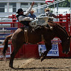 JAY YOUNG | THE GOSHEN NEWS<br /> A cowboy tries to hang on while riding a bucking horse during the Friday afternoon rodeo at the Elkhart County 4-H Fair.