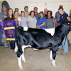 JOHN KLINE | THE GOSHEN NEWS<br /> Grand Champion and Heavy Weight Champion Dairy Feeder Calf winner Zachary Klotz, third from right, shows off his winning entry with buyers and supporters during the Elkhart County 4-H Dairy Feeder Calf Auction Friday afternoon. Pictured in front, from left, are Caroline Mullet, Kaley Alber, Caroline Bickel, Jo Franco, Stephanie Topping, Chris Bare and dad Tim Klotz. Pictured in back, from left, are Jim Weeber, Gary Kauffman, Richard Bickel, Mitch Alber, Richard Franco, Jody Lengacher, Mike Hertsel and Keith Goodman.