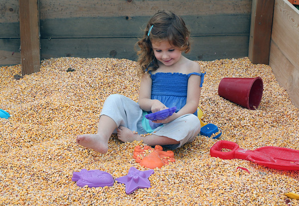JOHN KLINE | THE GOSHEN NEWS <br /> Anna Carey, 3, of Middlebury, enjoys some playtime in the Giant Corn Box while her father, David Carey, watches from a nearby bench during day one of the 2017 Elkhart County 4-H Fair early Friday morning.