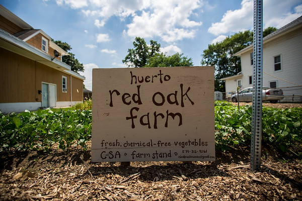 JAY YOUNG | THE GOSHEN NEWS<br /> Sitting between a pair of houses, this vacant lot on Cleveland Street in Elkhart was transformed into Red Oak Farm.