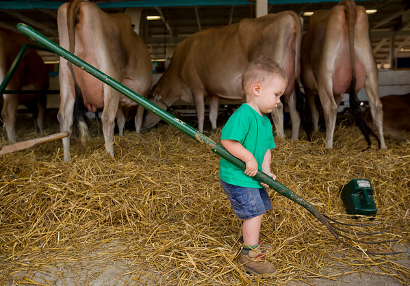 JAY YOUNG | THE GOSHEN NEWS<br /> Two-year-old William Gordon, of Warsaw, holds on a to a pitchfork as he tries to help with chores Friday morning at the Elkhart County 4-H Fair.