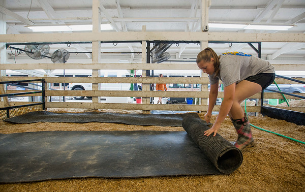 JAY YOUNG | THE GOSHEN NEWS<br /> Jenifer Robinson, 14, of Middlebury, rolls out a mat as she gets a stall ready for her cattle while preparing for the opening of the county fair Thursday morning.