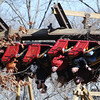 Globe/T. Rob Brown<br /> Roller coaster enthusiasts are suspended upside down during a double barrel roll on the Outlaw Run roller coaster Wednesday, March 13, 2013, at Silver Dollar City in Branson. Outlaw Run is the park's new hybrid wood-steel coaster with multiple inversions including a double barrel roll.