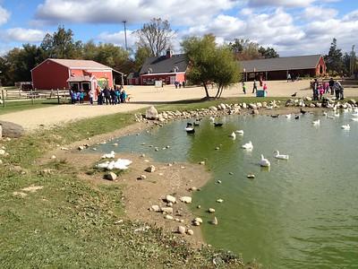 PHOTOS: Fall Harvest Festival at Upland Hills Farm