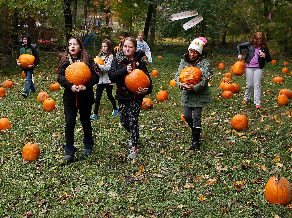 . Fourth graders at the Village School of North Bennington take their pumpkins.