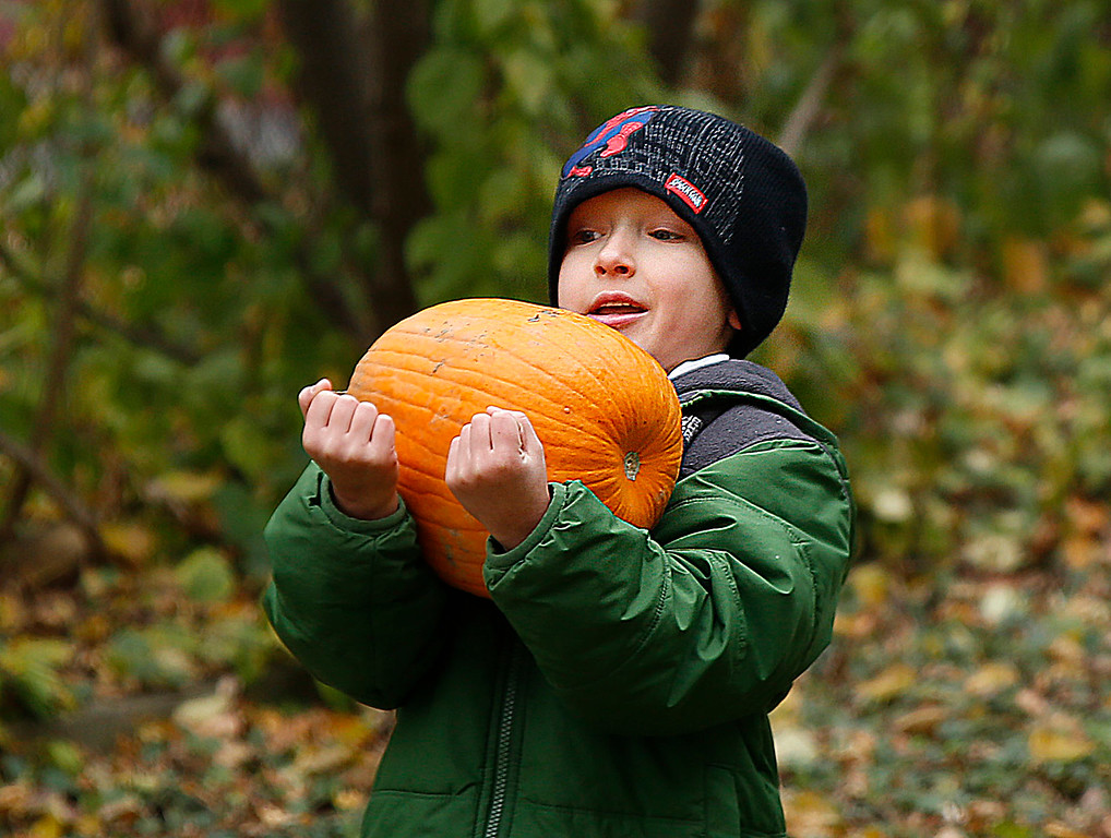 . First grader, Patrick Kelley has all hands on deck while carrying his large pumpkin.