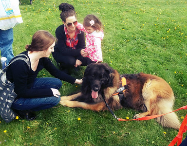 NIKKI RHOADES / GAZETTE From left, Stephanie Graham, of Wadsworth, Carly Kilma, of Wooster, and her daughter Milly, 3, visit with Argos the Leonberger. Argos and his owner Cheryl Heinly, of Montville, were part of a demonstration by North Central Ohio K-9 Search and Rescue during Saturday's Earth Day events held at Buffalo Creek Retreat in Seville.
