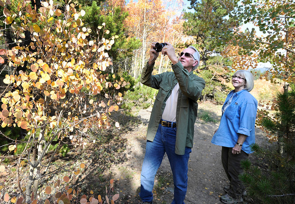 """Dale Barron, of Iowa, and his wife Brenda take photographs of the changing fall foliage on the Peak to Peak Scenic Byway near Nederland. For more photos and video of the changing colors go to  <a href=""""http://www.dailycamera.com"""">http://www.dailycamera.com</a><br /> Jeremy Papasso/ Camera"""