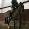Tasha Tamawa, of Great Barrington, rides 007, one of the many horses at Berkshire Equestrian Center in Richmond on Thursday afternoon. (January 9th 2014 Holly Pelczynski/Berkshire Eagle Staff)
