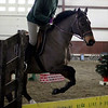 Tasha Tamawa, of Great Barrington, practices jumps with 007, one of the many horses at Berkshire Equestrian Center in Richmond on Thursday afternoon. (January 9th 2014 Holly Pelczynski/Berkshire Eagle Staff)