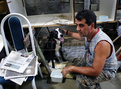 A volunteer takes care of a wounded dog just rescued from a private residence in Nova Friburgo, Rio de Janeiro state, Brazil, January 22, 2011 . Many volunteers are helping save hundred pets and others animals that were left behind by their owners or lost after they proprietors are killed in the mudslide in the mountainous region, when a massive wall of water descended narrow valleys, carrying away anything in it's path.   (Austral Foto/Severino Silva)